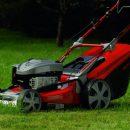 Выбор между электрической и бензиновой газонокосилками
